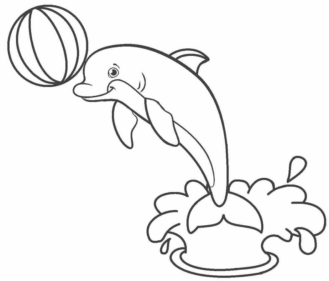 Desenho lindo de Golfinho para pintar