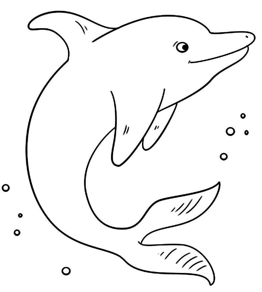 Molde de golfinho para colorir
