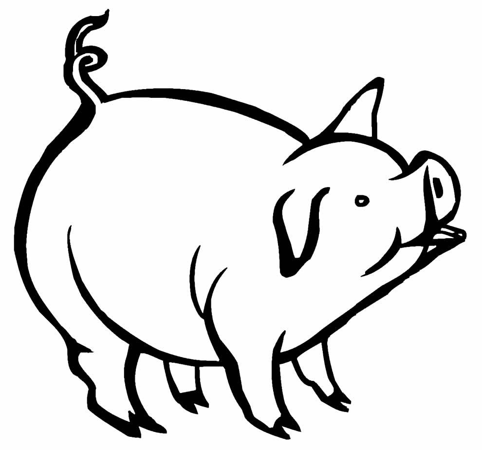 Desenho de porquinho