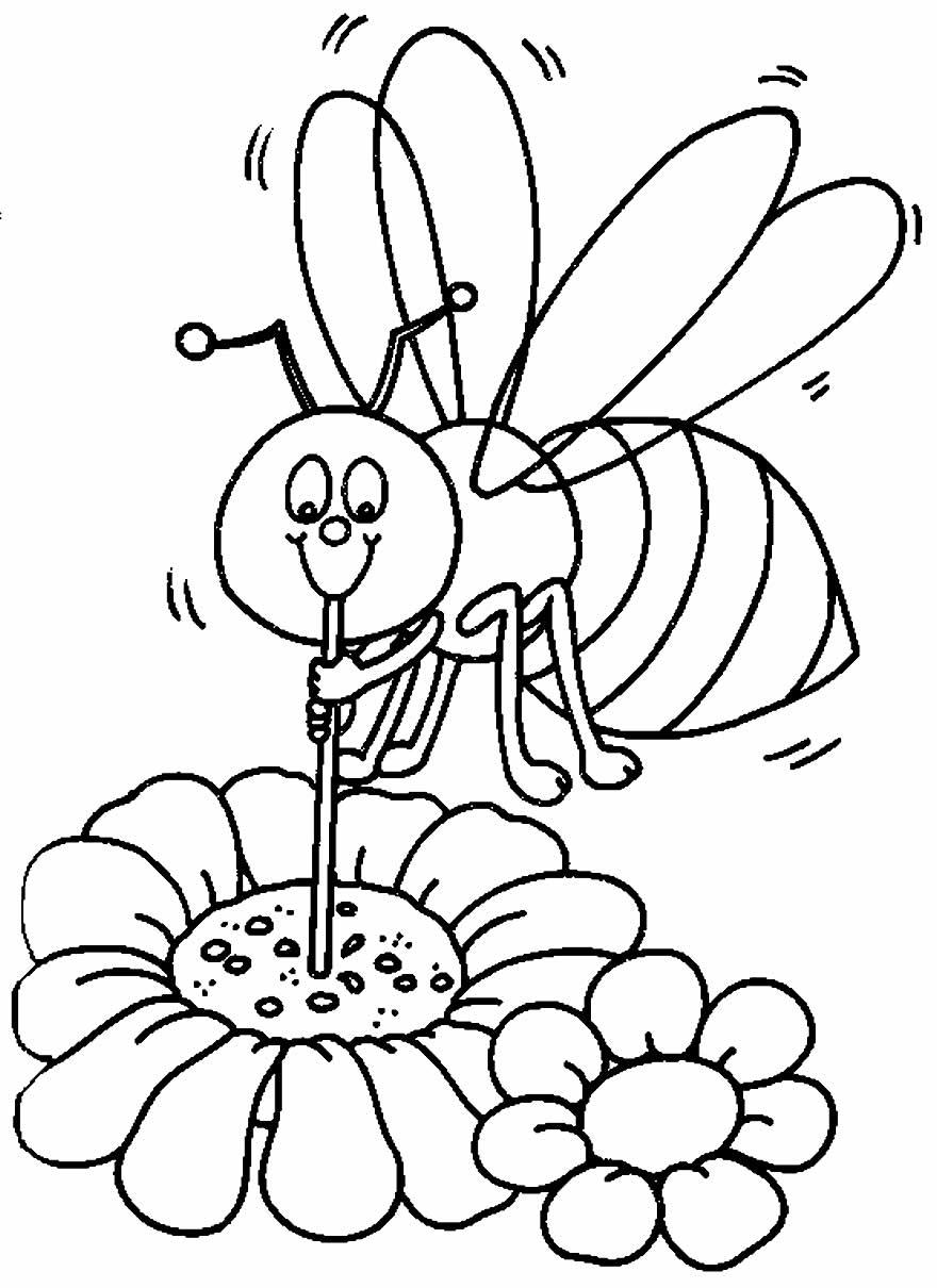 Desenho de Abelhinha para pintar