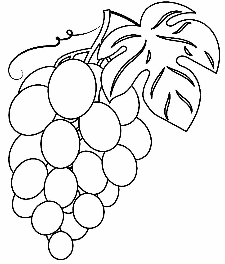 Desenho de uva para colorir