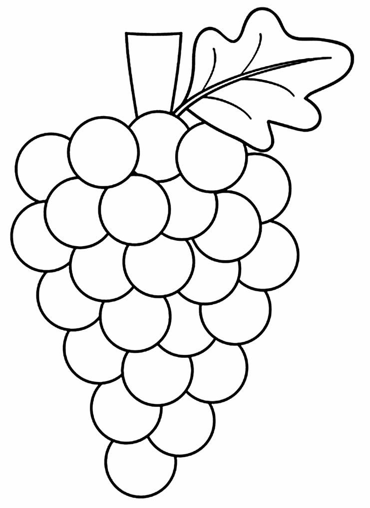 Imagem de uva para colorir