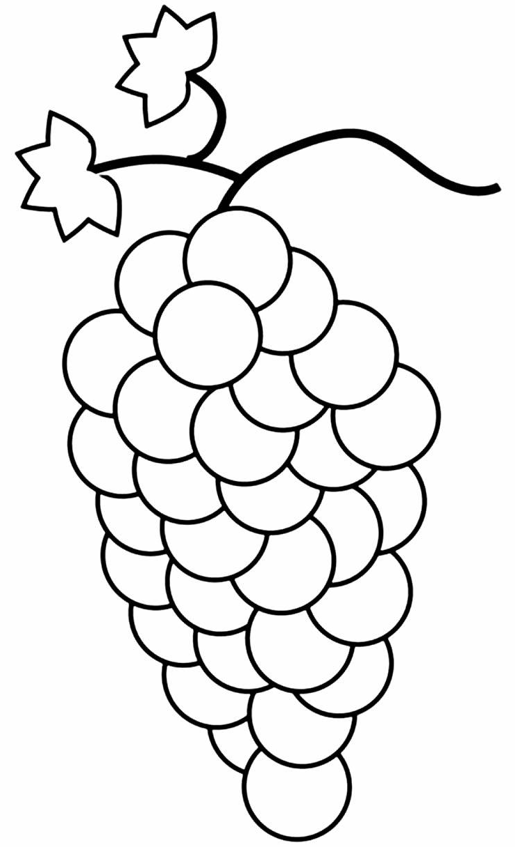 Desenho de uva para pintar