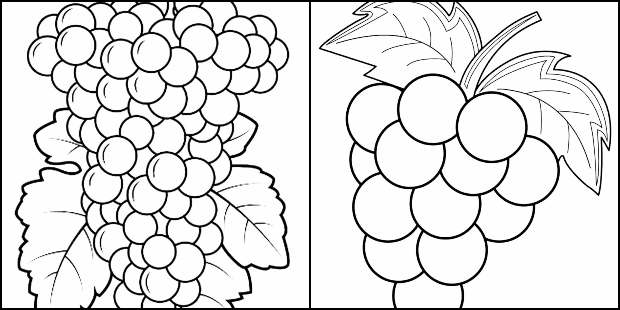 Desenhos para colorir de uvas