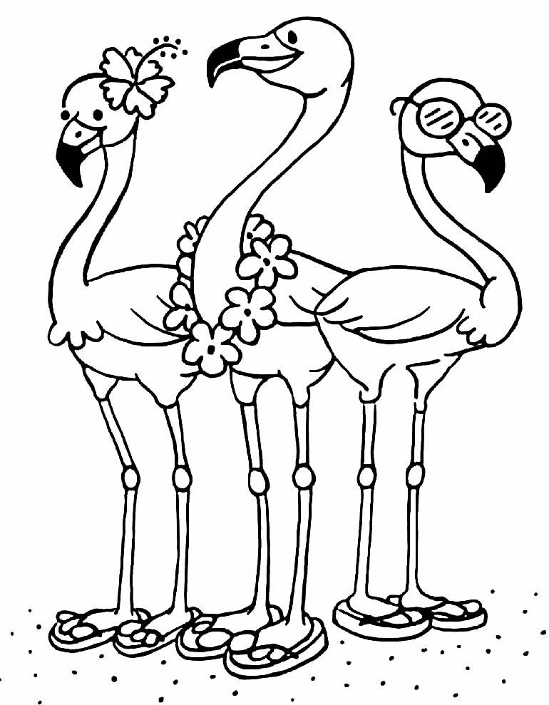 Desenho divertido de Flamingos
