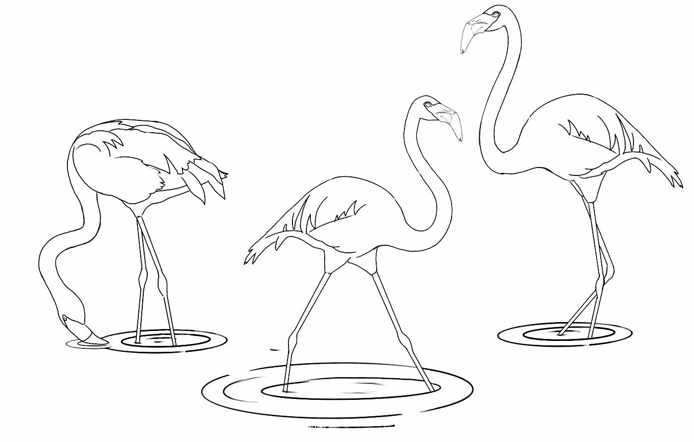 Molde de Flamingo para imprimir