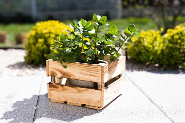 Decoração com um lindo caixote de madeira