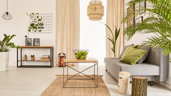 Decoração para a casa com plantas