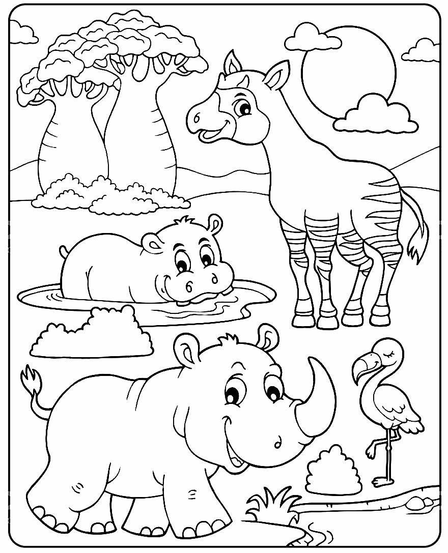 Desenho de animais para colorir