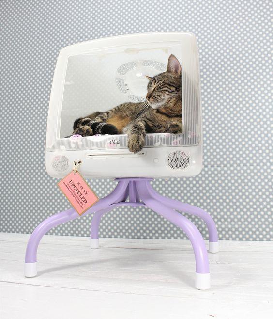 casa para gato com monitor