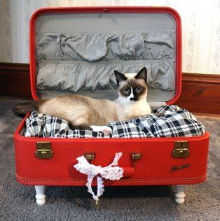 mala como cama para pets