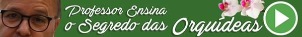 Curso Online de Brigadeiro Gourmet