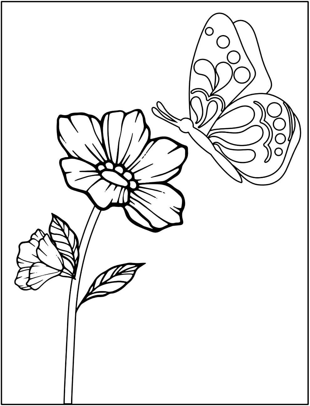 Imagem de Flores para colorir