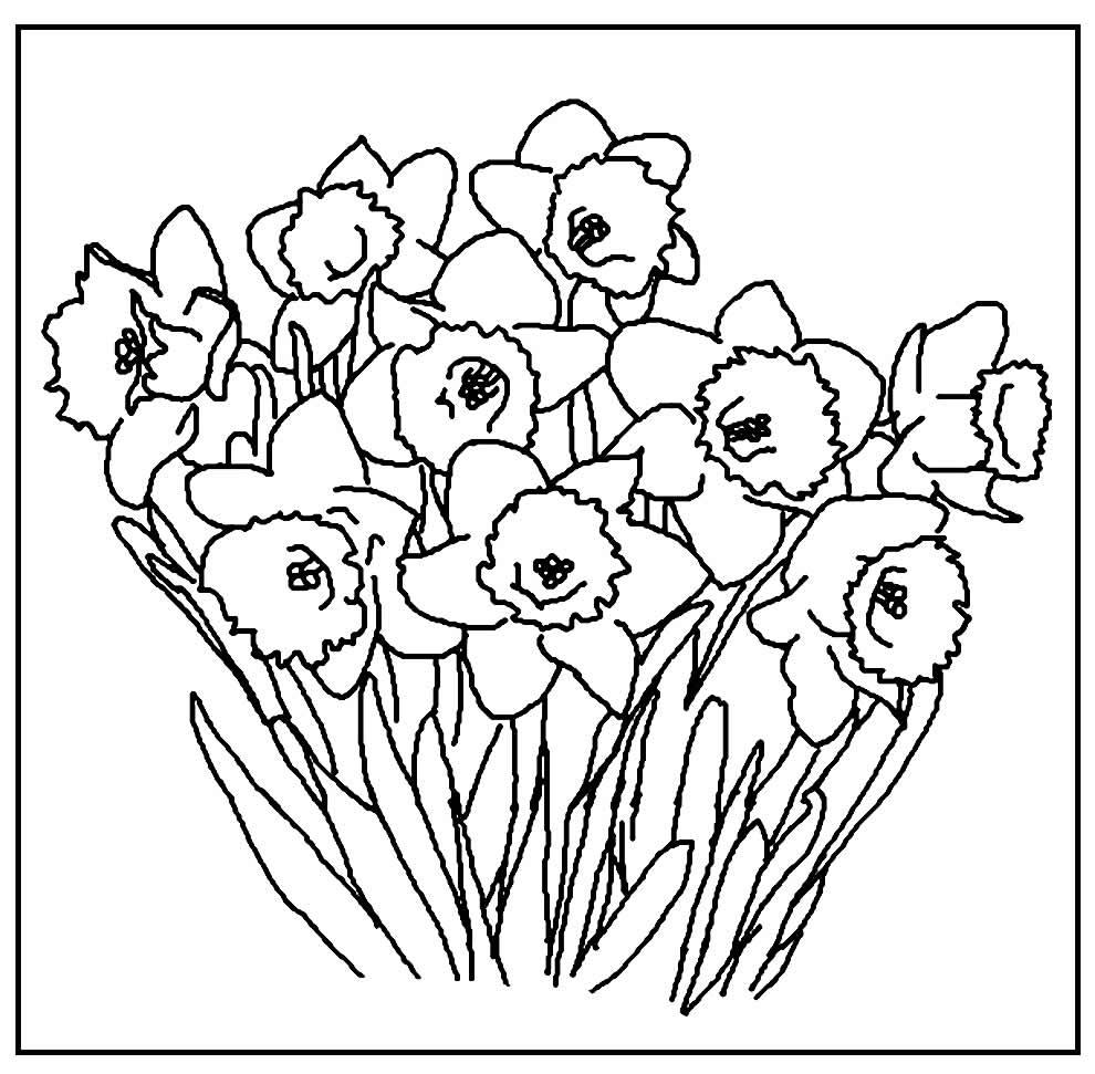 Modelos de Flores para colorir