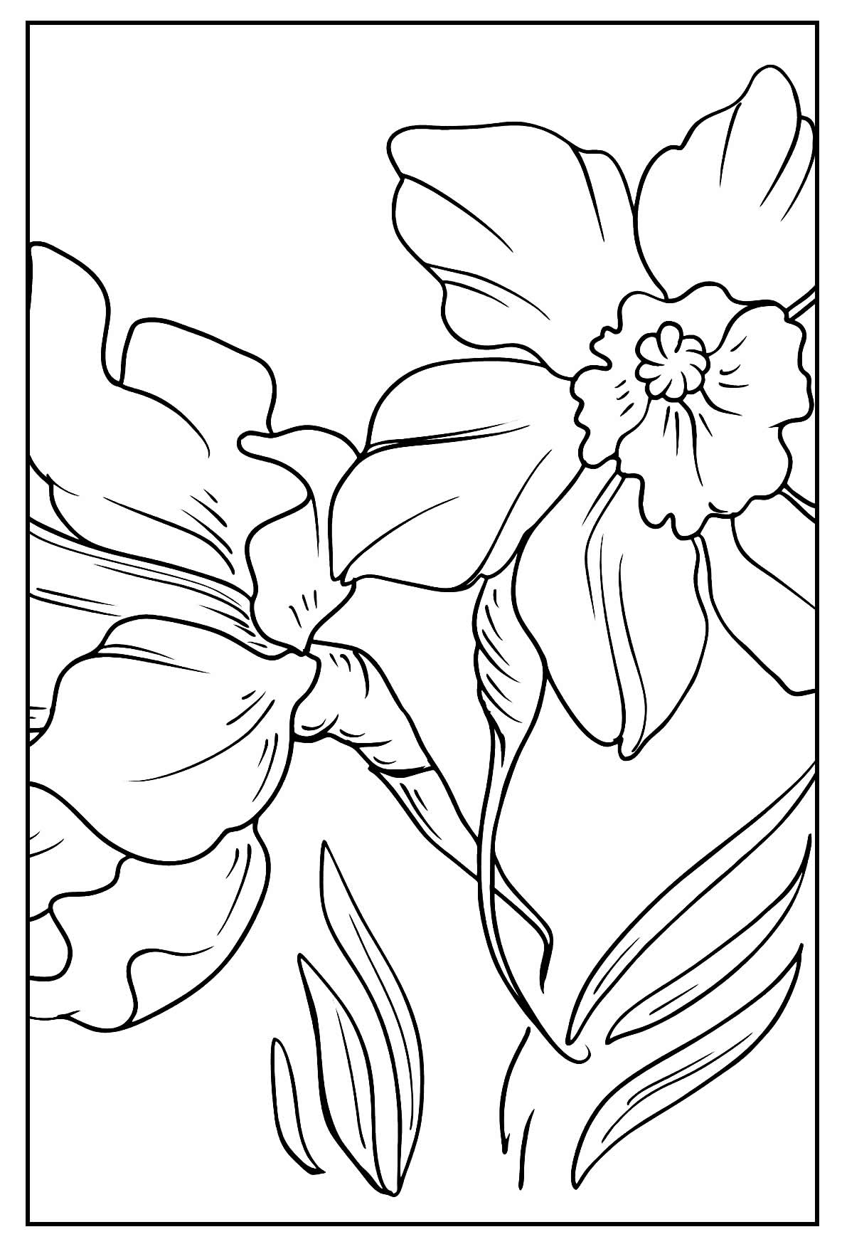 Páginas para colorir de Flores