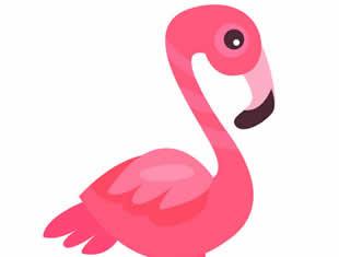 Desenhos de Flamingo para pintar