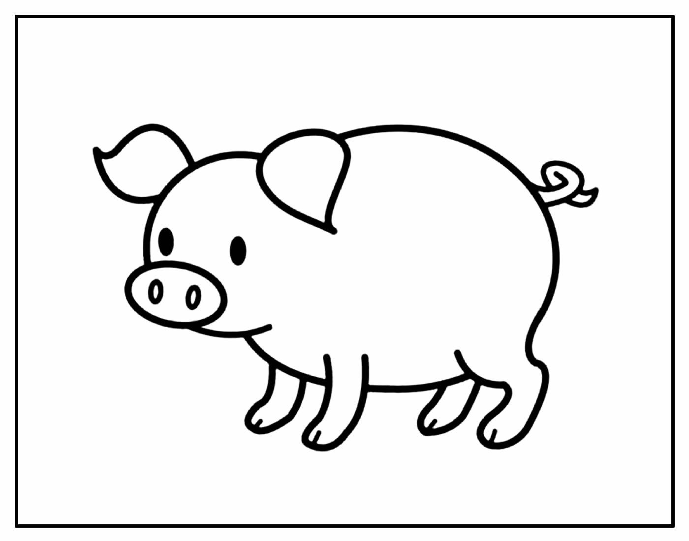 Página para colorir de Porquinho