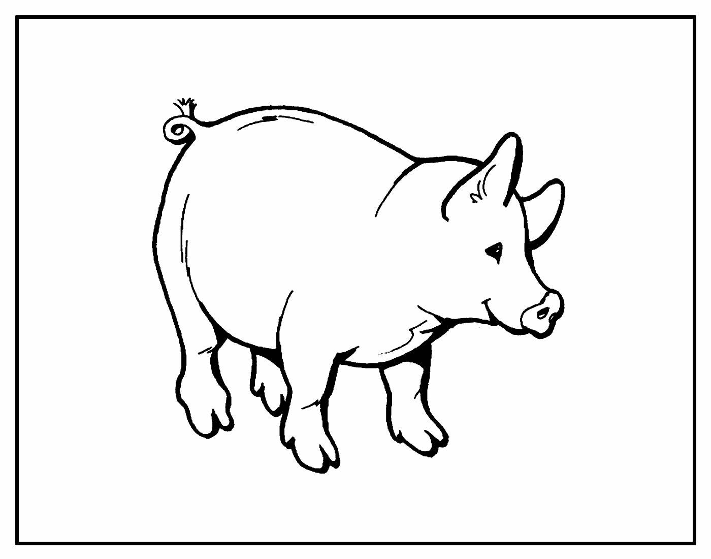 Desenhos para colorir de Porquinhos