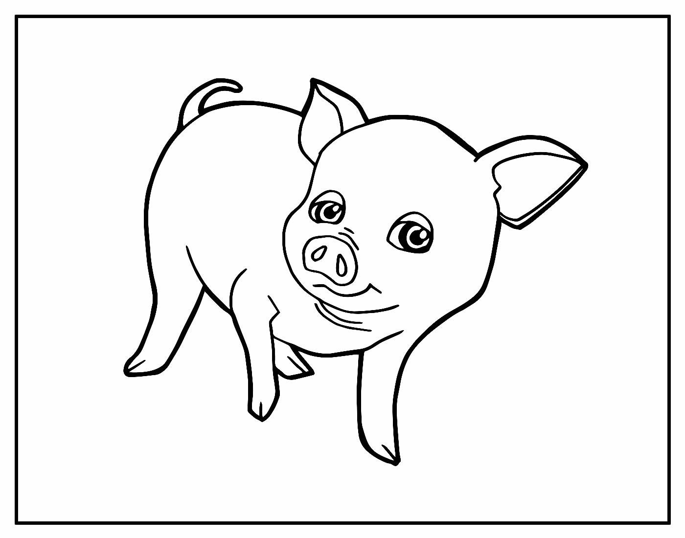 Desenho para pintar de Porquinho