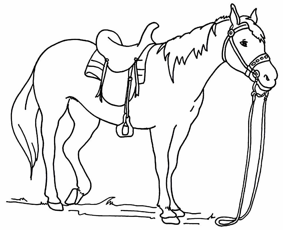 Desenho para imprimir e colorir de Cavalo