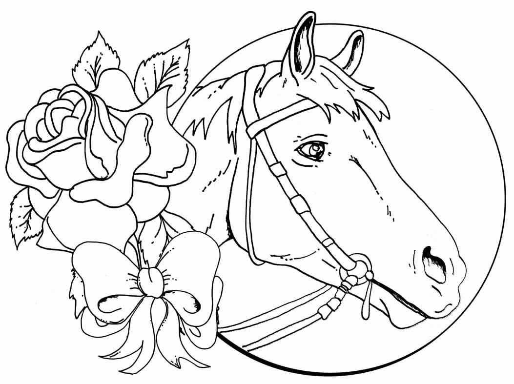 Desenho para pintar de cavalo