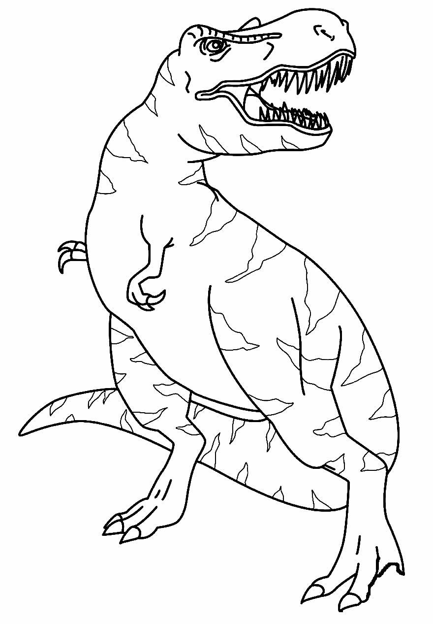 Desenho de Dinossauro T-Rex para pintar