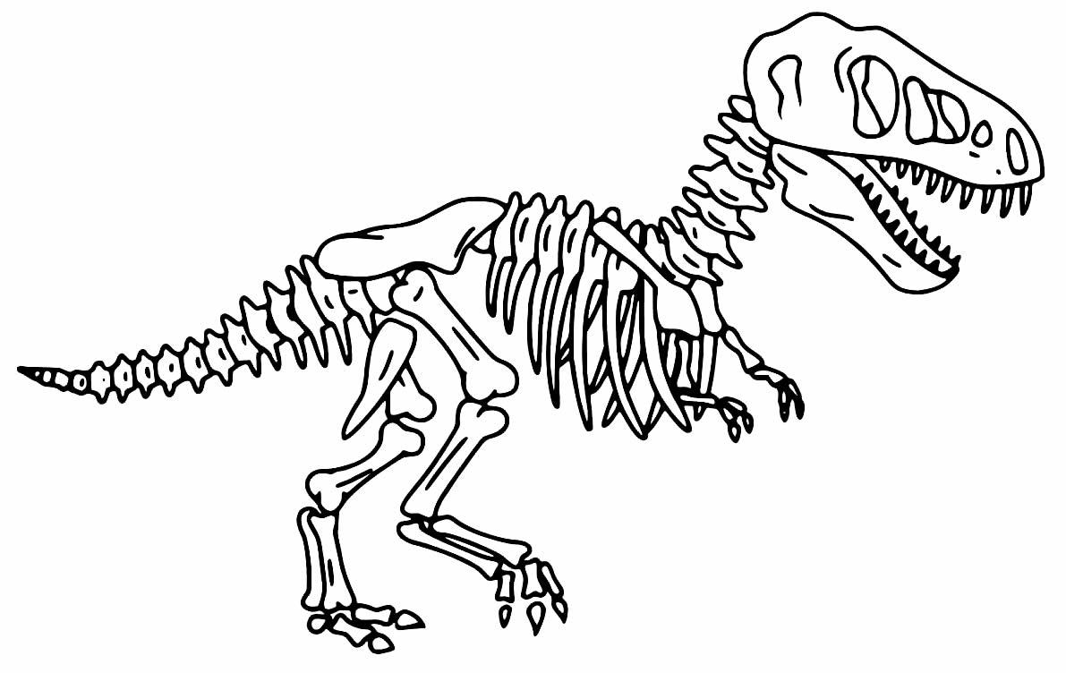 Desenho de T-Rex - Ossos