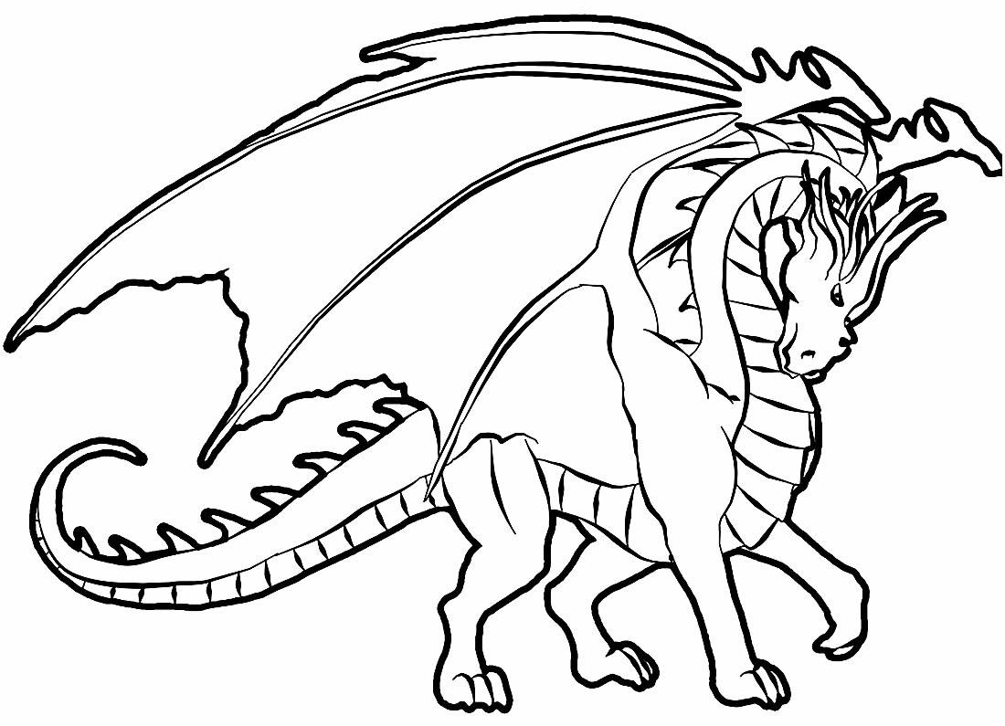 Desenho de Dragão para imprimir e colorir
