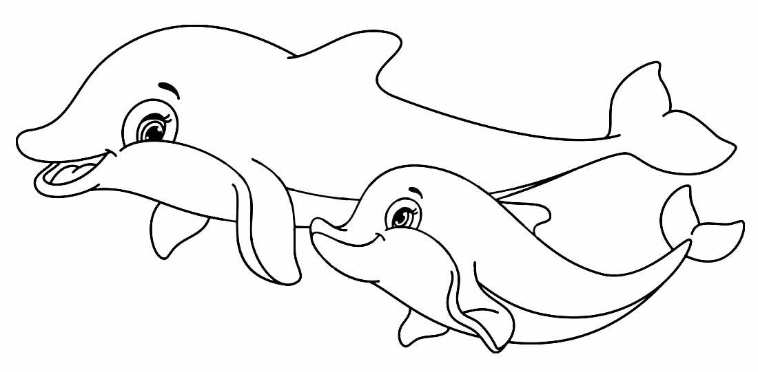 Golfinhos para pintar e colorir