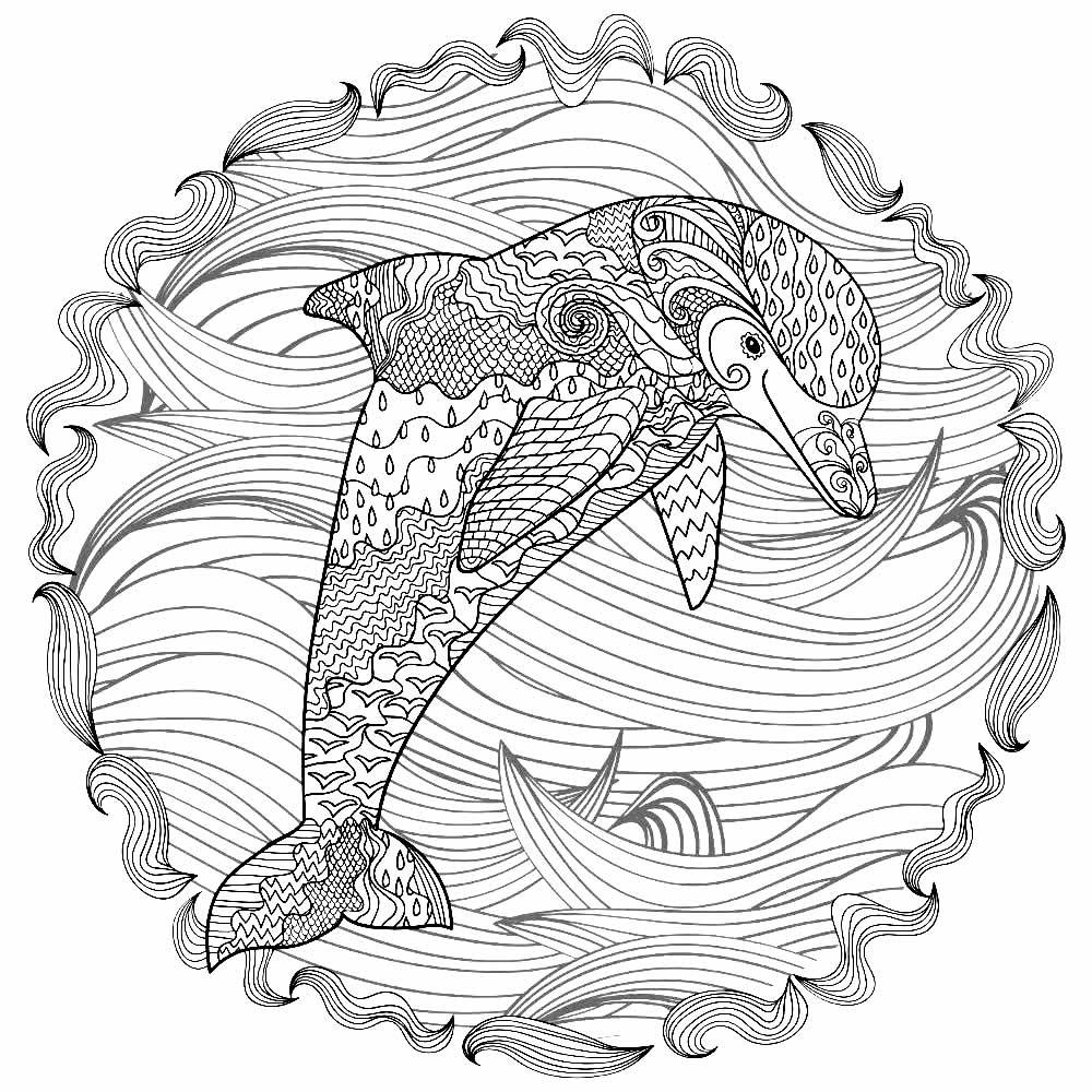 Desenho de Golfinho para pintar e colorir