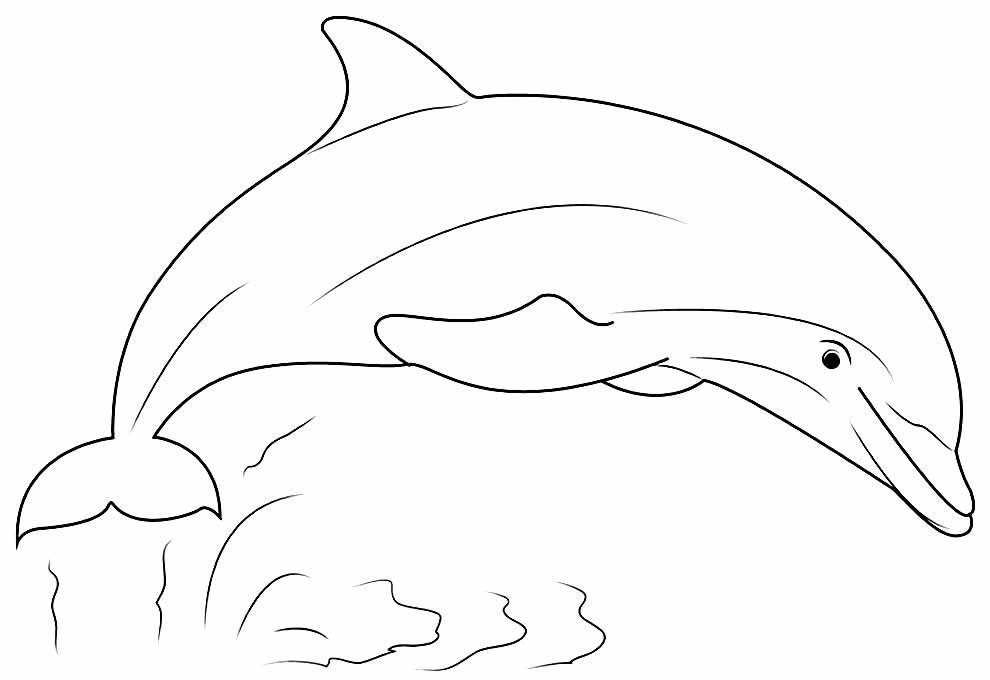 Desenho de Golfinho para imprimir e colorir