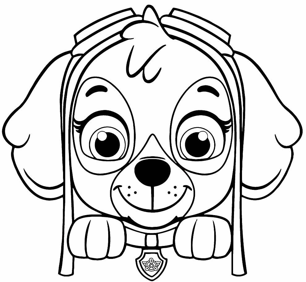Imagem da Patrulha Canina para colorir