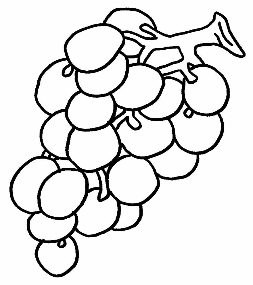 Desenho de Uva para pintar e colorir