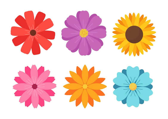 flores colorirdas