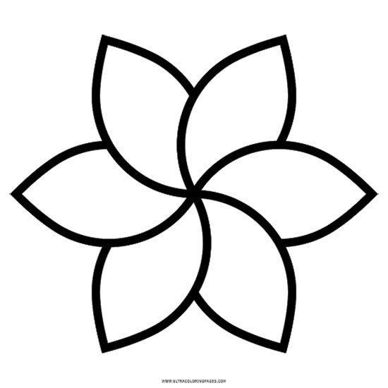pétalas de flor