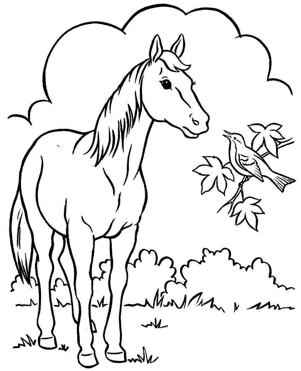 Desenho de fazenda para colorir