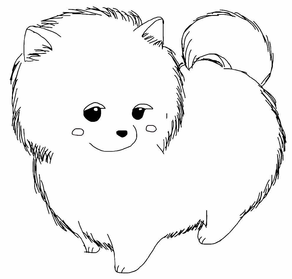 Imagem de cachorrinho para colorir