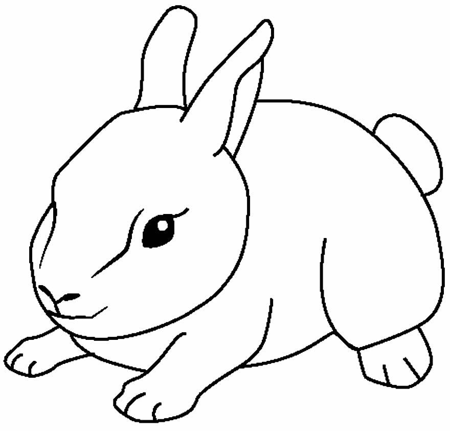 Desenho para colorir de coelho