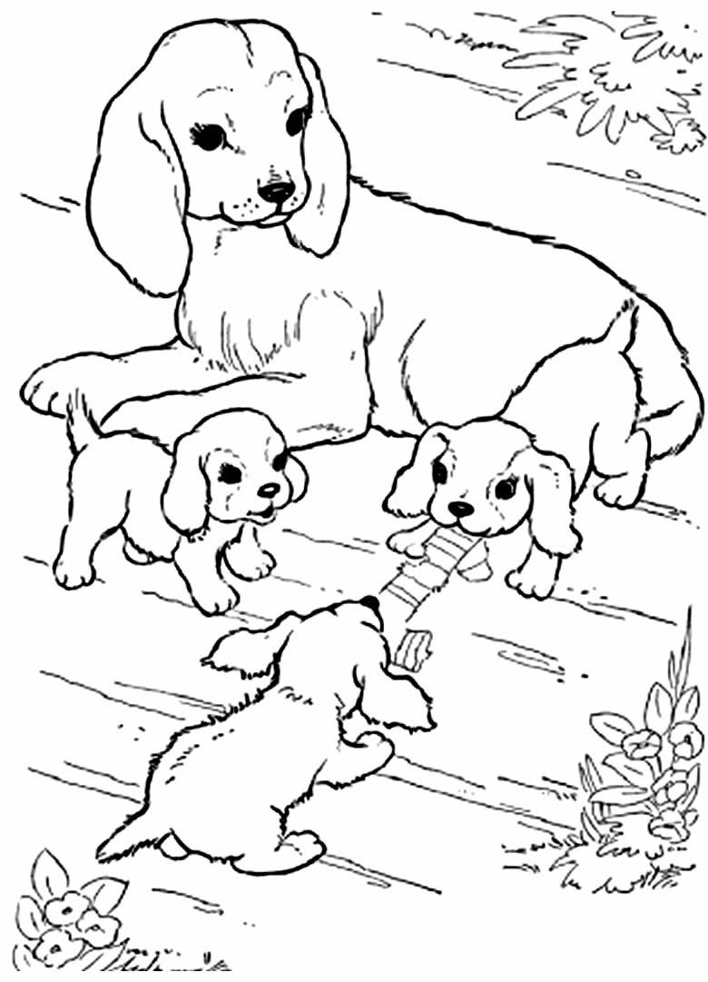 Desenho de cachorrinhos para colorir