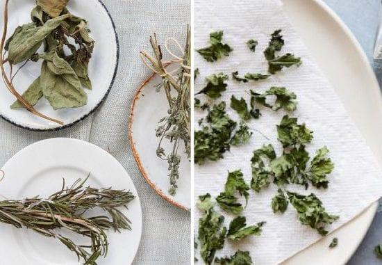 como secar ervas em casa