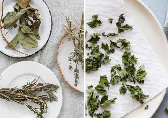 como desidratar ervas