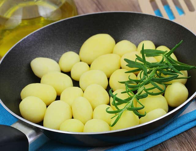 corte olivette