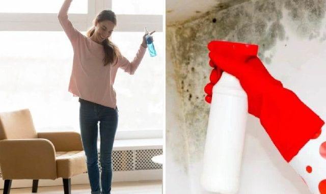 como tirar o mofo da parede