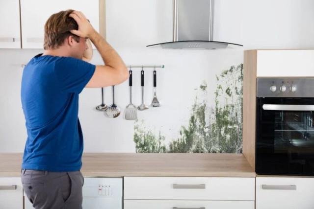 mofo na cozinha