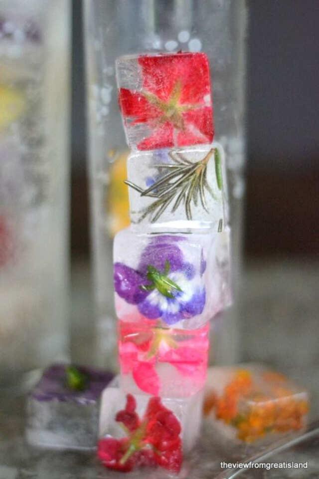 gelo com flores e frutas