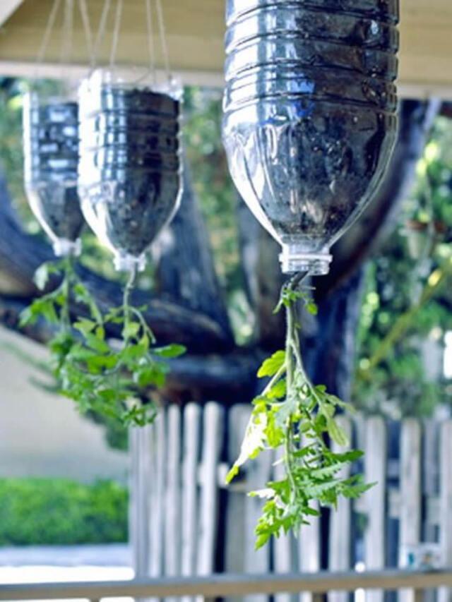 vaso invertido com garrafa pet