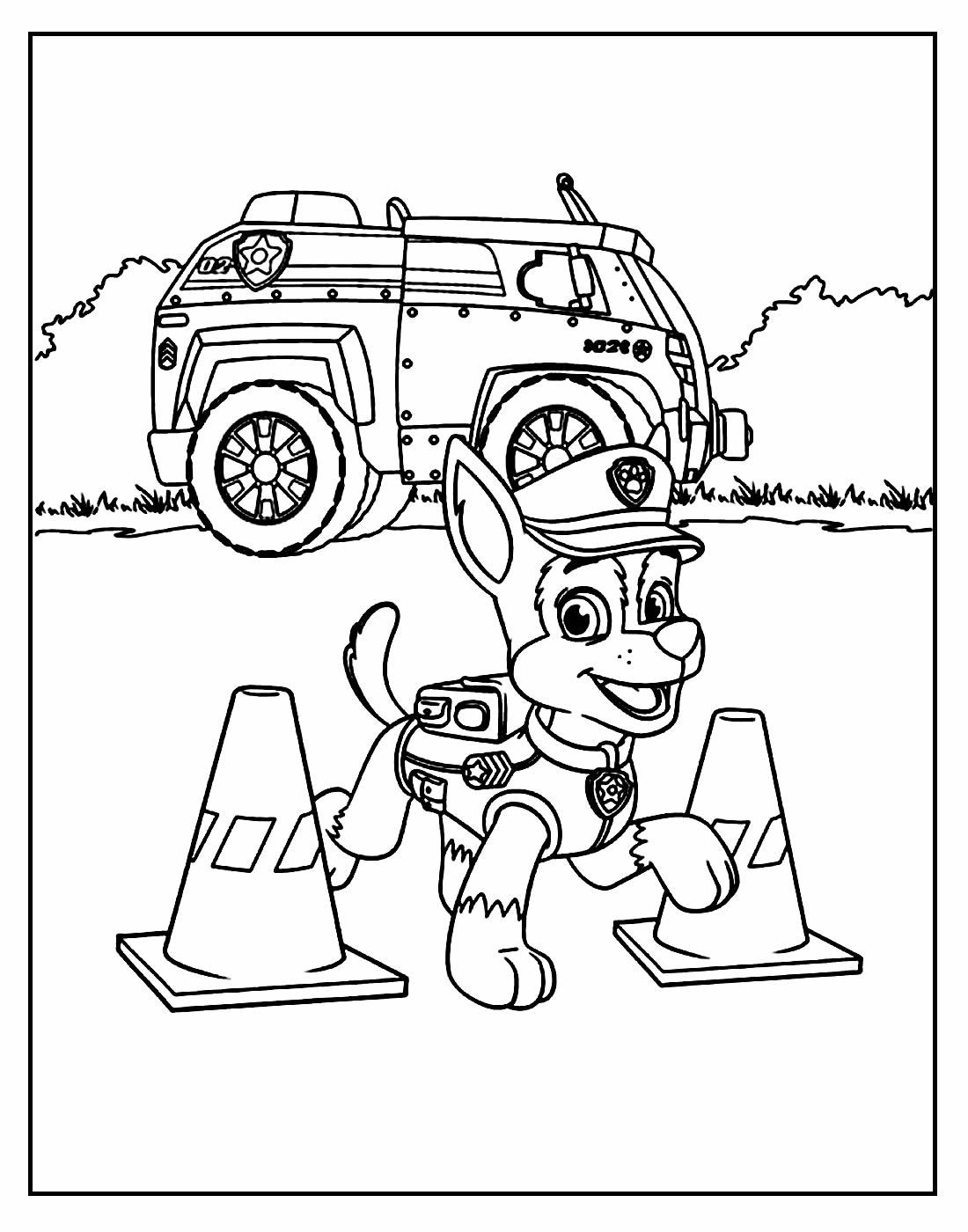 Desenho Patrulha Canina Colorir