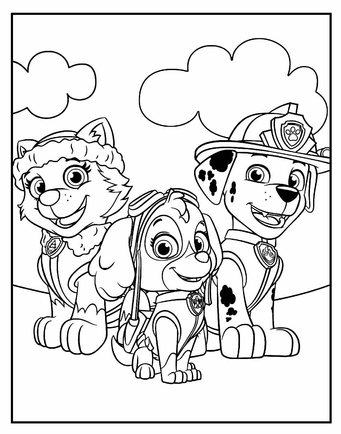Página para colorir da Patrulha Canina