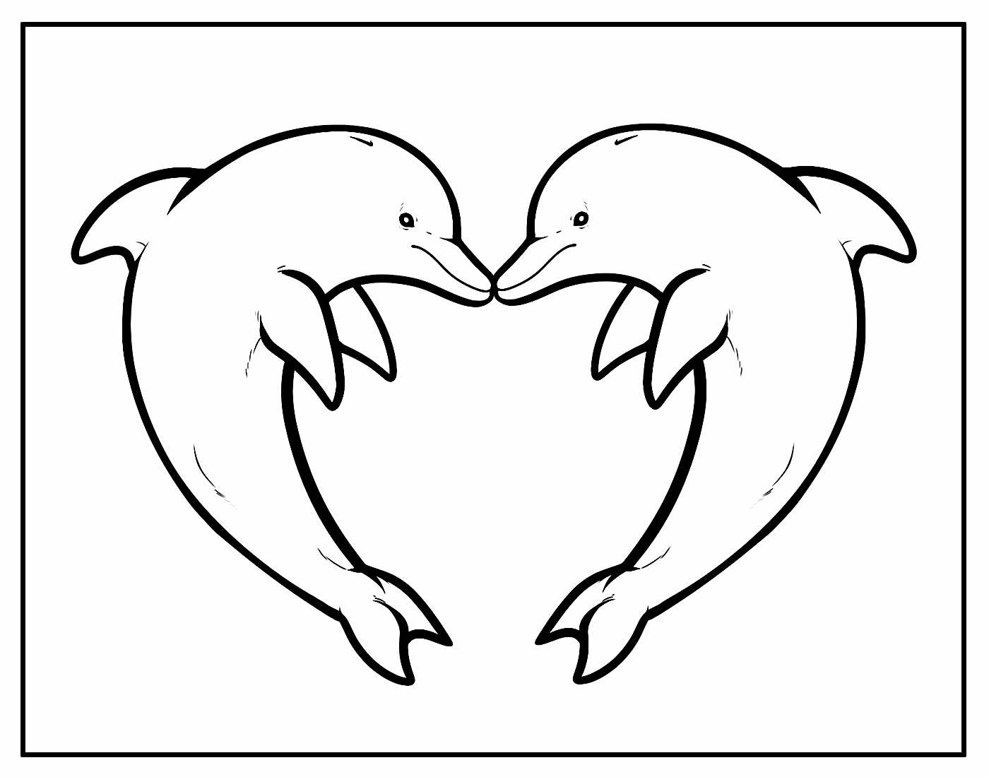 Desenho para colorir de Golfinhos