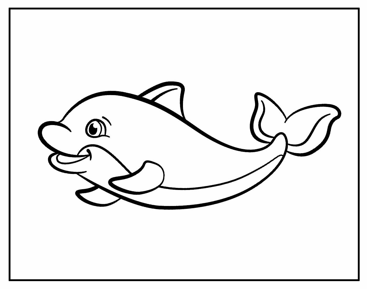 Desenho para colorir Golfinho